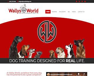 Dog Agility Training Long Island